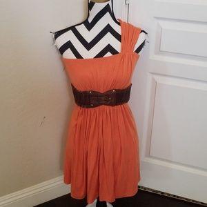 Sky Pumpkin Spice Dress NWOT
